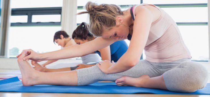 Saúde nas empresas: como a ginástica holística ajuda a melhorar a qualidade de vida dos funcionários