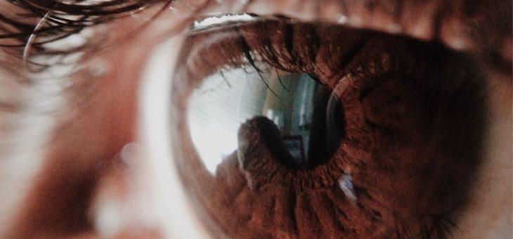 A importância dos olhos na postura: uma visão global!